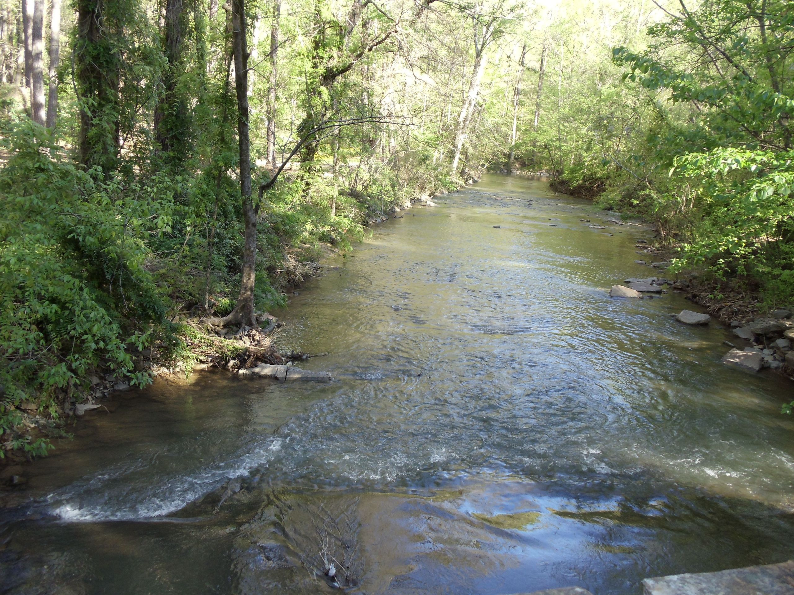 Creek in Jemison Park in Beautiful Mountain Brook, Alabama image